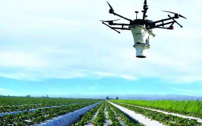 UAV-IQ & Koppert Introduce a New Aerial Biocontrol Service