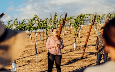 How Growers Overcome The Challenges of Transitioning to Organic